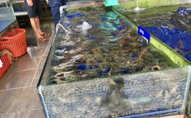 ベトナム、ダナンのニーケビーチ付近の海鮮レストランのかに